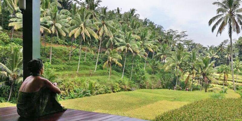 panchakarma-resort-bali