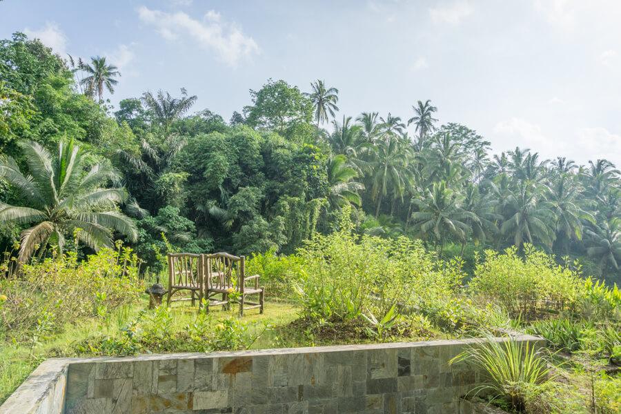 14-Oneworld-Ayurveda-Bali-Panchakarma-Ubud-Kraeutergarten