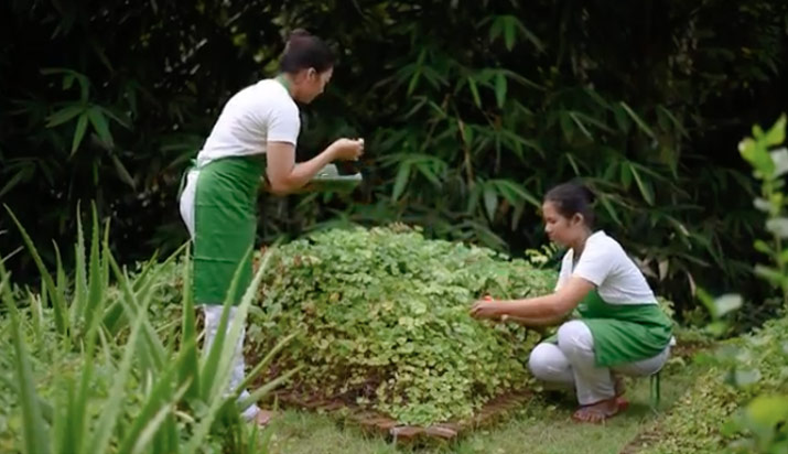 herbal-garden-OWA